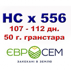NS SUMO 556 ПОДСОЛНУХ ПОД ГРАНСТАР