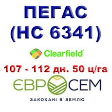 Подсолнечник ПЕГАС ( НС 6341 ) - улучшенный РИМИ